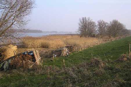 Tijdens de WS78 Biesboschtocht  vanuit Dordrecht op 7 januari 2006. Langs de Nieuwe Merwede en de Boven Spieringpolder