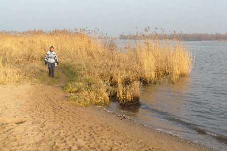 Tijdens de WS78 Biesboschtocht  vanuit Dordrecht op 7 januari 2006