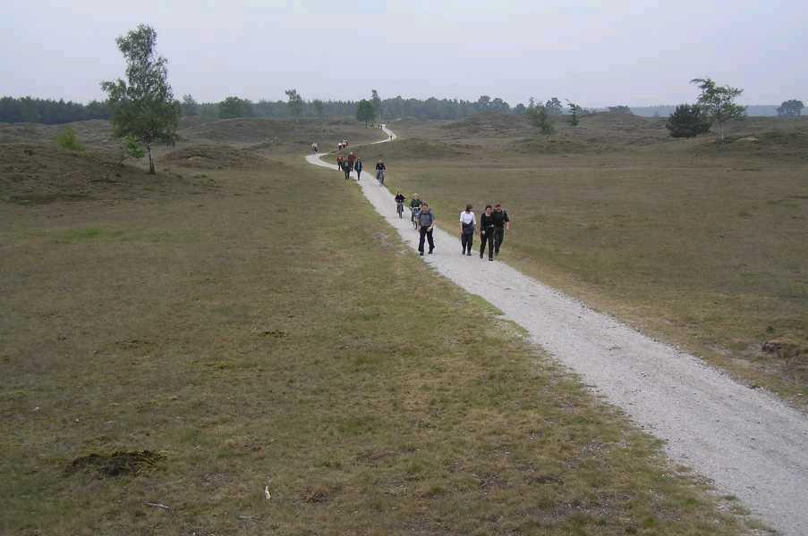 Met de Drentsch-Friese Wold Wandelvierdaagse (Diever) 2006  Aekingerzand of Kale Duinen