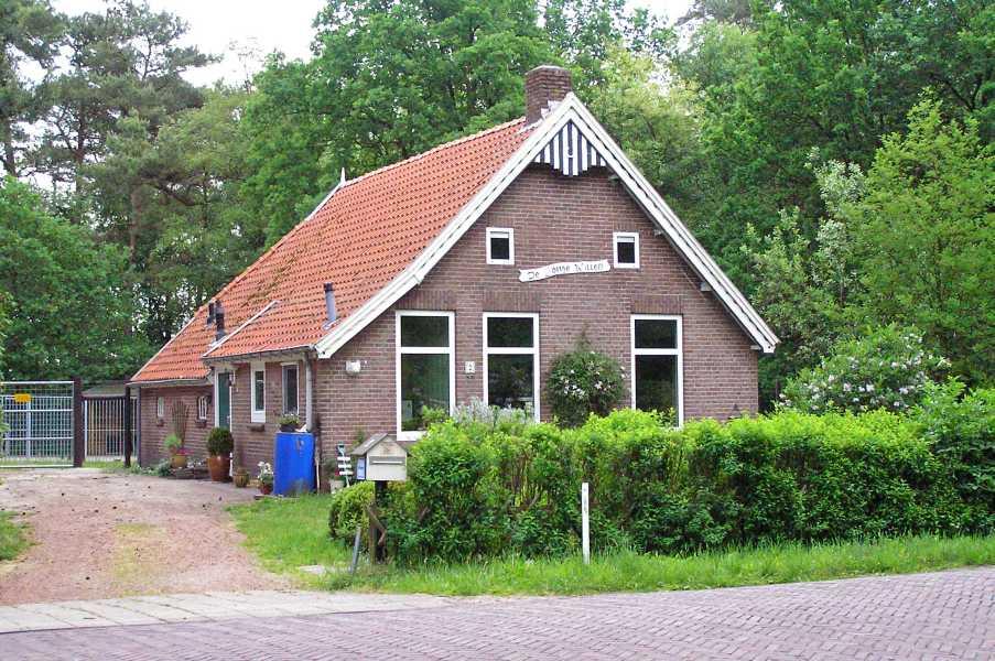 Met de Drentsch-Friese Wold Wandelvierdaagse (Diever) 2008  De Jonge Willem in Oude Willem