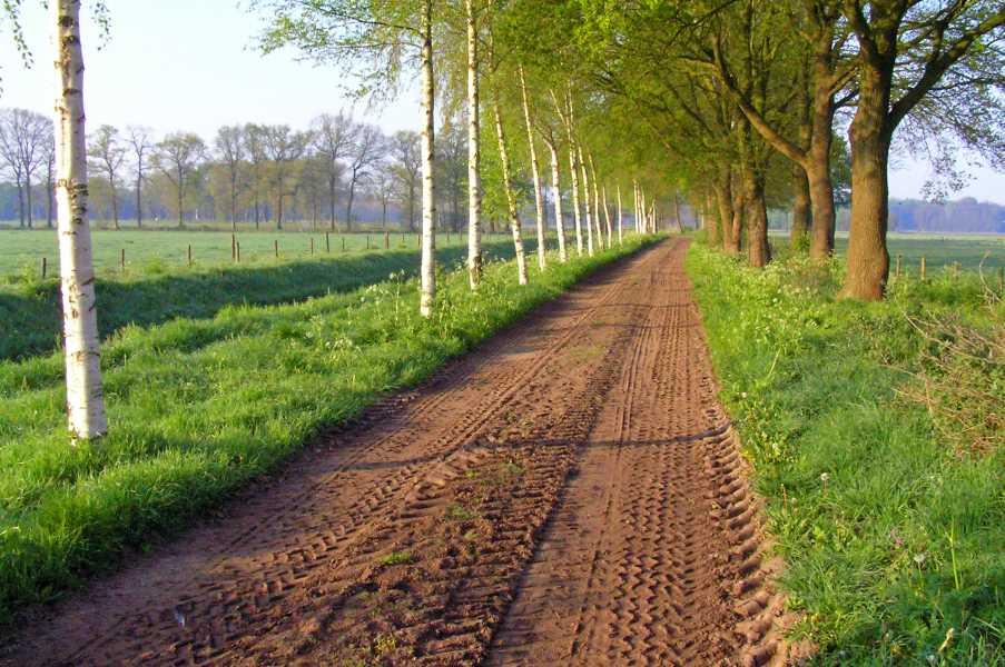 Marskramerpad 1  Plompmarsweg, Okkenbroek