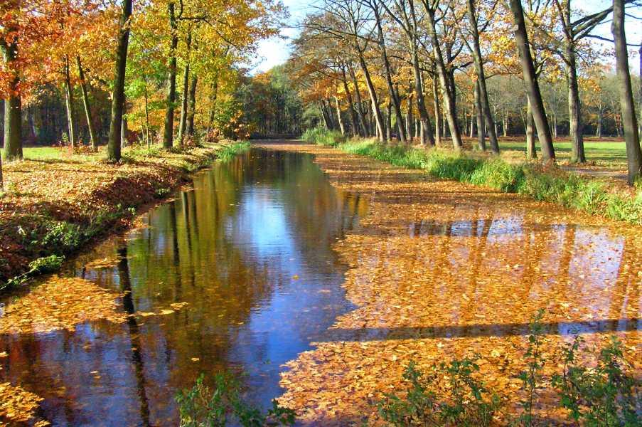 Peellandpad  langs het Griendtsveenkanaal
