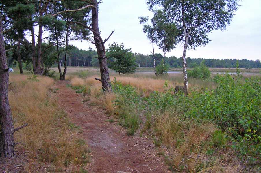 Kempische wandeldagen 2008, 1e dag  Braakhuizensche Heide