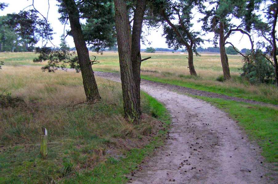 Kempische wandeldagen 2008, 1e dag  Strabrechtse- en Lieropse Heide