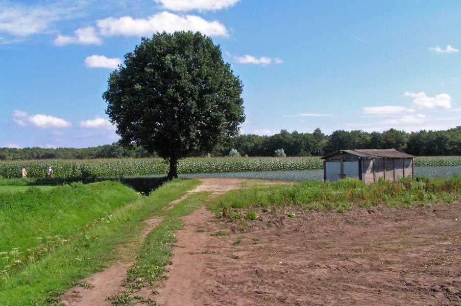 Kempische wandeldagen 2008, 1e dag  nabij buurtschap Moorsel