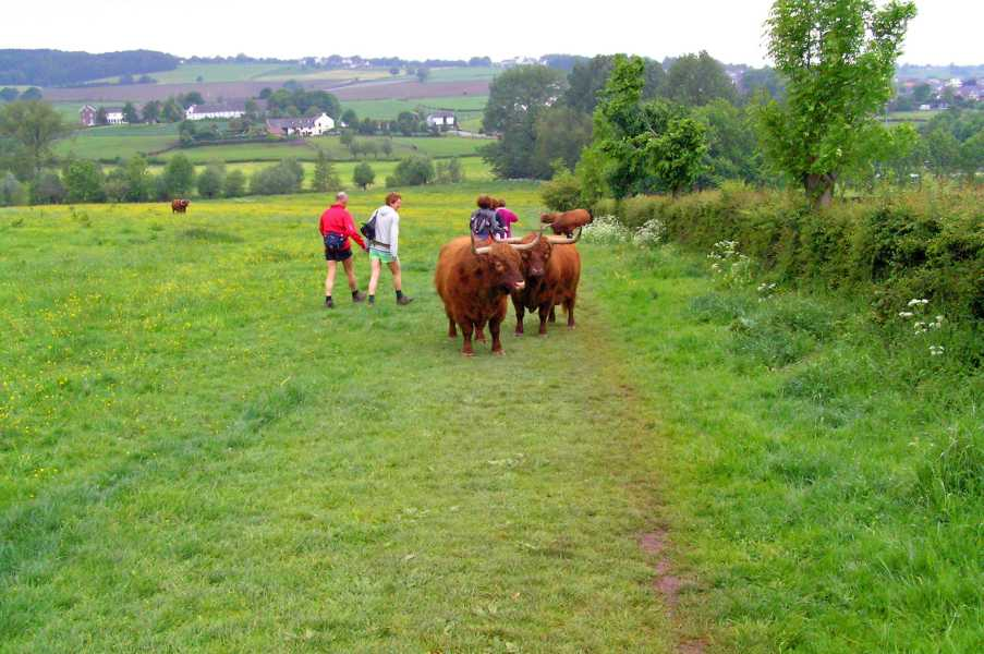 Met de Ronde van Zuid-Limburg 2008  nabij Camerig
