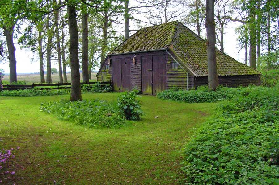 Drents Friese Woud Wandelvierdaagse 2009