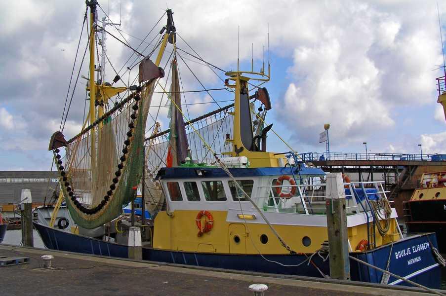 Rondje Texel, 20 juni 2009  vissersboot in de haven van Oudeschild