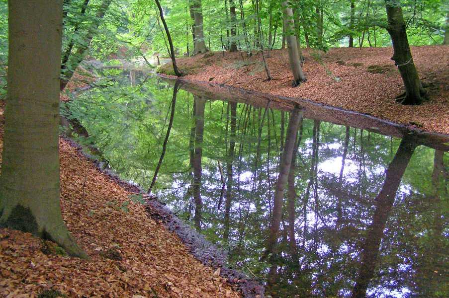 NS wandeling Gooise Lusthoven
