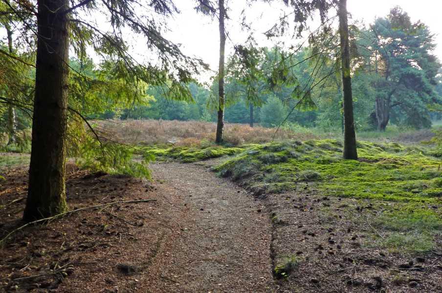 Kempische wandeldagen 2009,   Landgoed Gulbergen