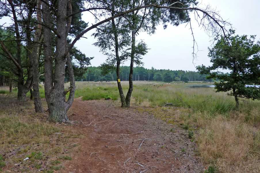 Kempische wandeldagen 2009,   Braakhuizense Heide