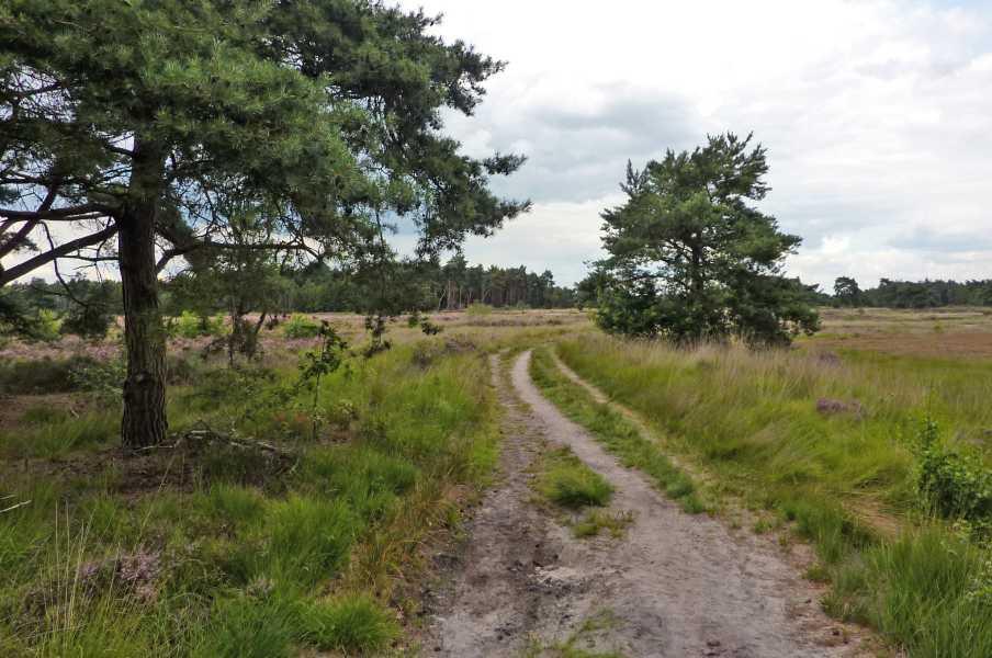 Kempische wandeldagen 2010,   Braakhuizensche Heide