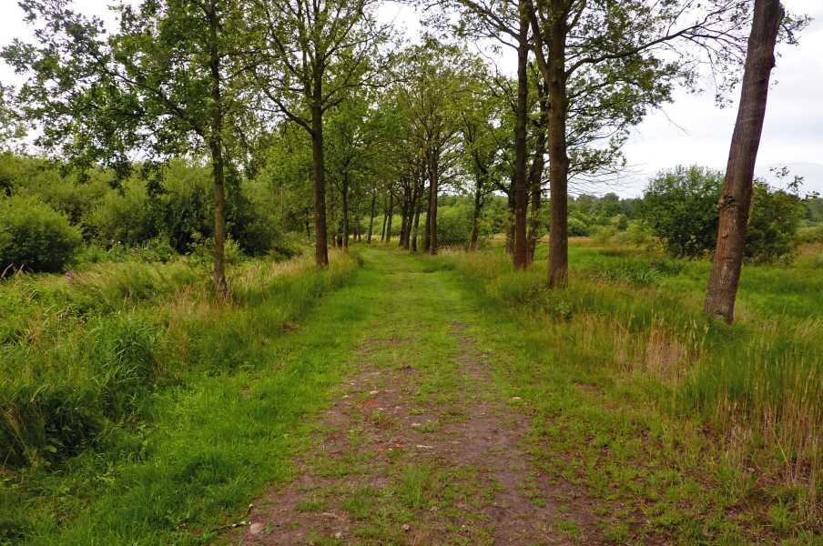 Kempische wandeldagen 2010,   Sang en Goorkens