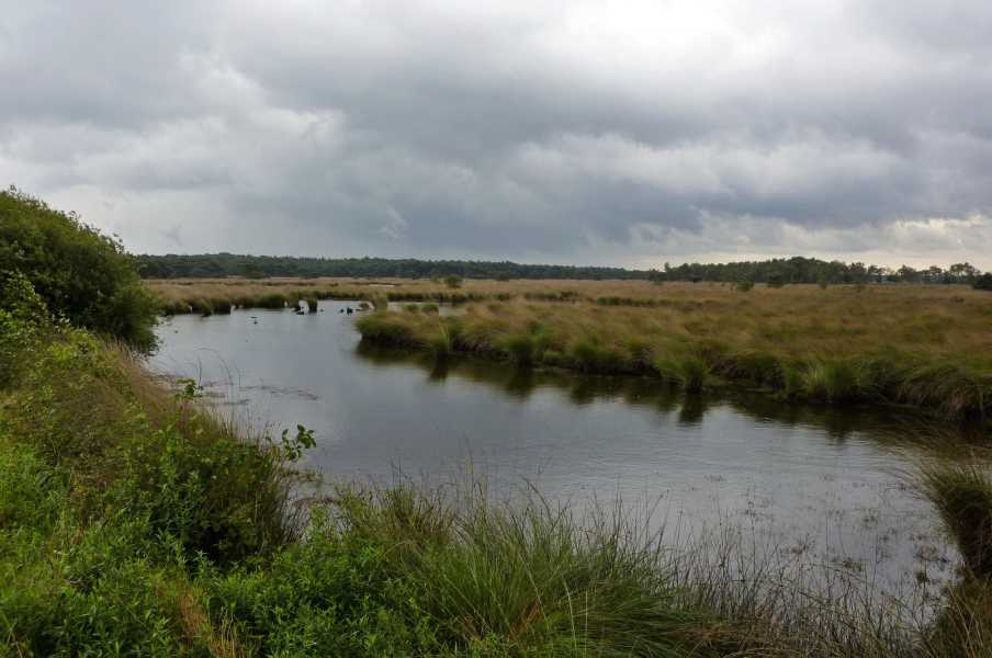 NS wandeling Wouwse Plantage (GR5)
