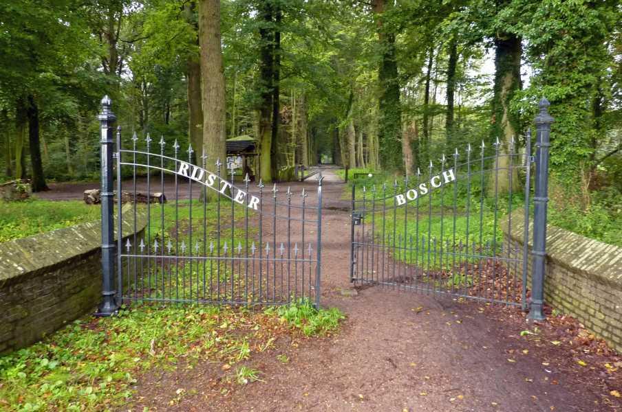 NS wandeling Gaasterland  Rijsterbos