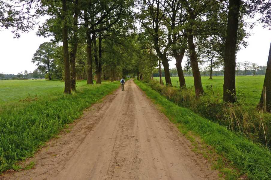 NS wandeling Graafschap  langs de Oosterwijkweg