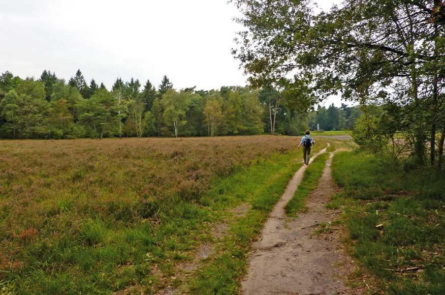 NS wandeling Graafschap  nabij Linde