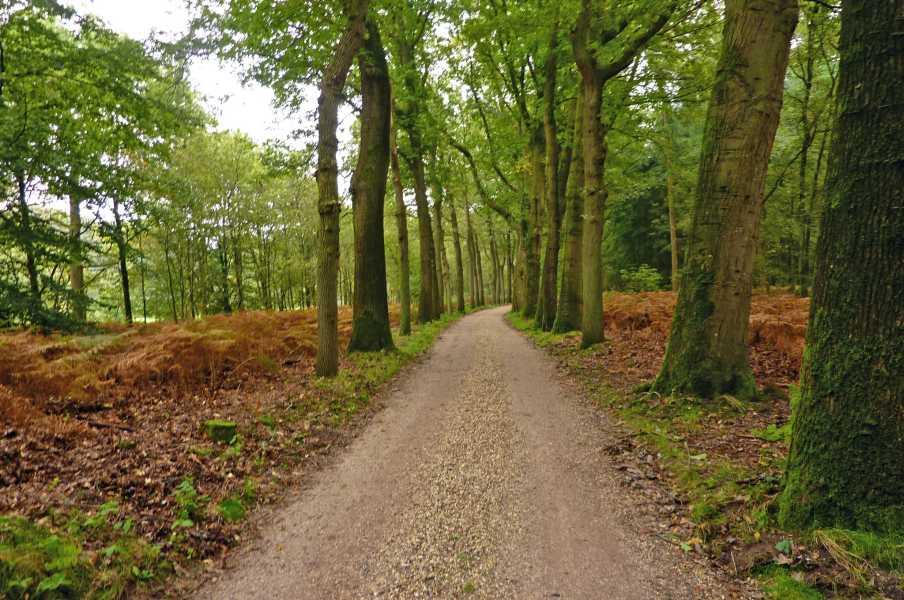 NS wandeling Leuvenumse beek  Oud Groevenbeek
