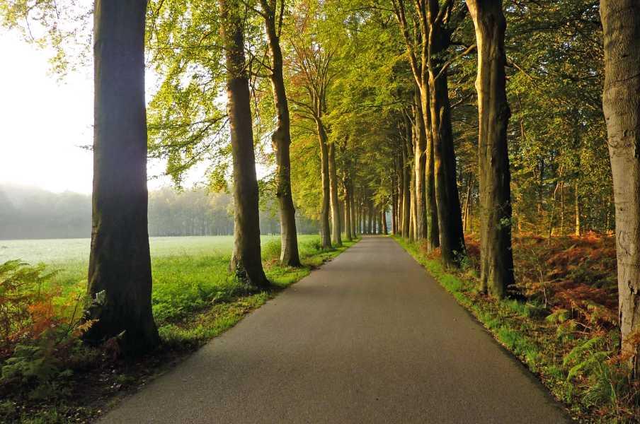 NS wandeling Leuvenumse beek  langs de Oude Garderense weg
