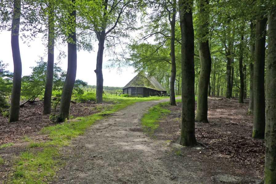 de marathon van Apeldoorn  oude schaapskooi nabij Hoog Buurlo
