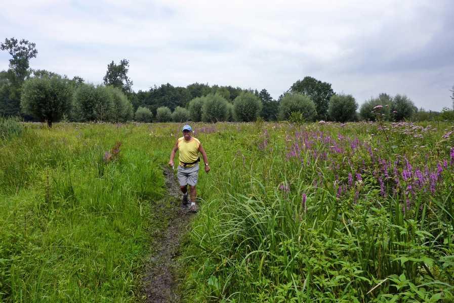 Kempische wandeldagen 2011