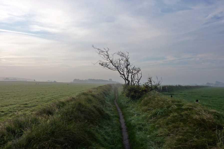 de marathon van Texel  Landschapsreservaat De Hoge Berg