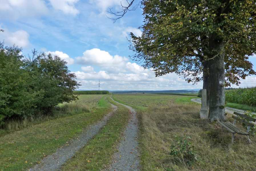 Burgenweg  tussen Seidlersreuth en Falkenberg