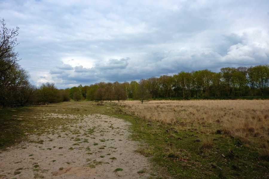 NS wandeling Elsterberg van Rhenen naar Veenendaal  landgoed De Laan
