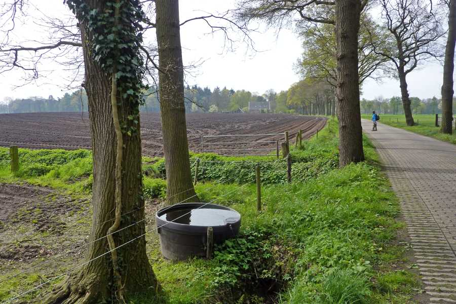 NS wandeling Bekendelle van Winterswijk naar Aalten  langs de Holthuisweg te Winterswijk