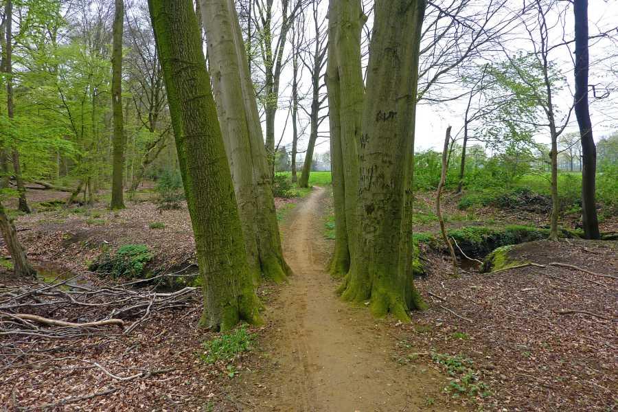NS wandeling Bekendelle van Winterswijk naar Aalten  nabij de Bosweg