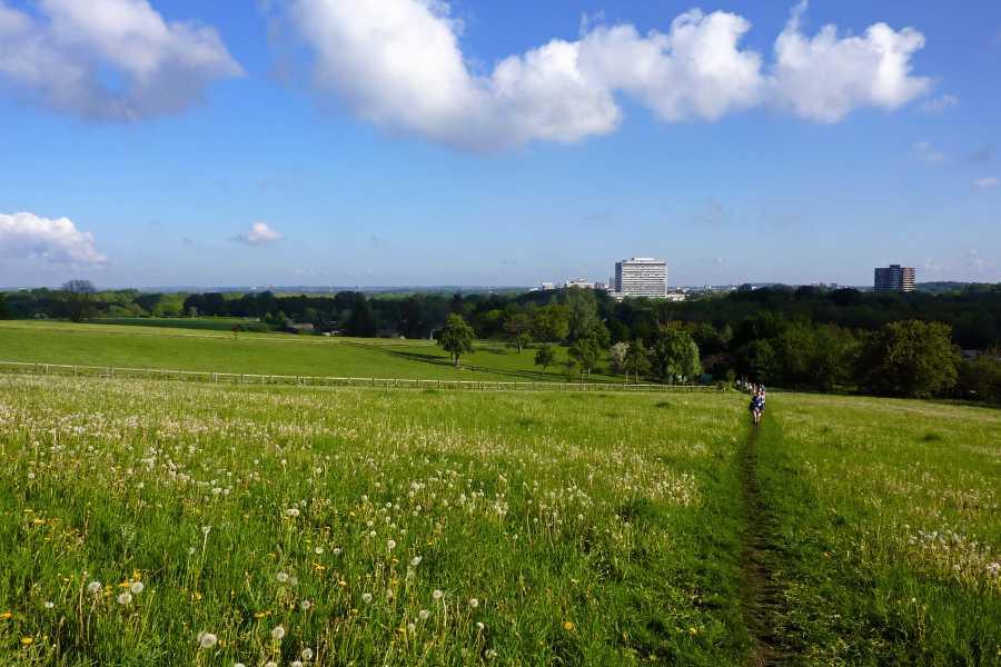 Met de Ronde van Zuid-Limburg 2012   Imstenradebos