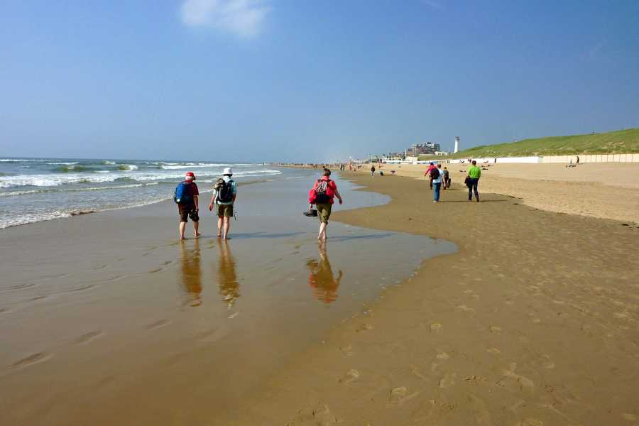 NS wandeling Noord Hollands Duin Reservaat van Castricum naar Egmond aan Zee  aan het strand van Egmond aan Zee