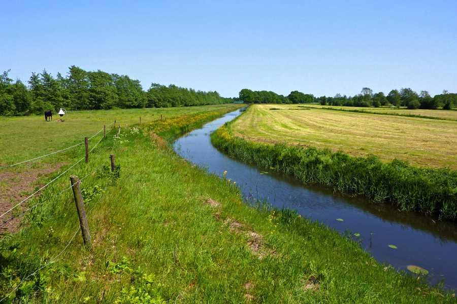 18e Drents Friese Wold Wandelvierdaagse 2012  tussen Uffelte en Wittelte