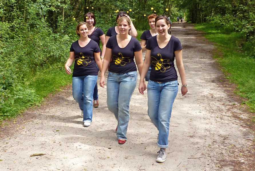 NS wandeling Wouwse Plantage (GR5)  heel aparte bijen  op de Kalmthoutse Heide