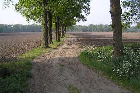 Tijdens de 75 van Hengelo op 13 mei 2006; uitzicht vanaf de N733 - Oldenzaalsestraat