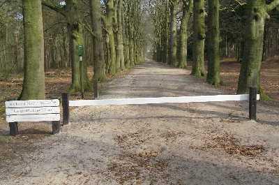 tijdens de NS-wandeling Beukenburg