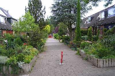 Met de 1e Plus Wandelvierdaagse Alkmaar 2007