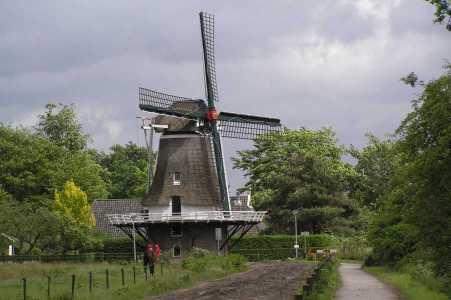 Met de Drentsch-Friese Wold Wandelvierdaagse (Diever) 2006 molen van Diever