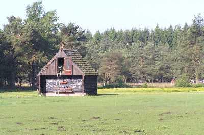 Met de Drentsch-Friese Wold Wandelvierdaagse (Diever) 2007