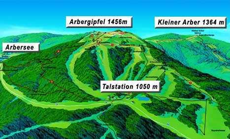 Arber regio