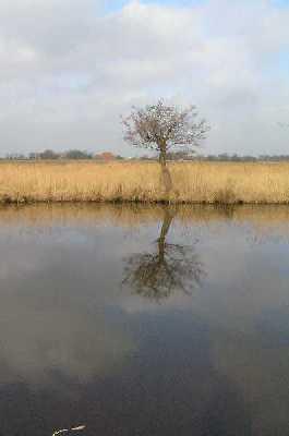 Met de FLAL-Weerribbenwandeltocht vanuit Scheerwolde, Overijssel langs het kanaal Steenwijk-Ossenzijl