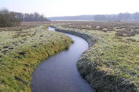 Met de FLAL-De Moere-tocht  vanuit Grolloo, Drenthe;  in natuurgebied Hullen