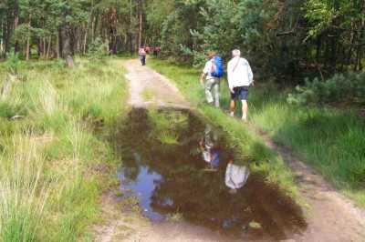 Apeldoornse vierdaagse 2007