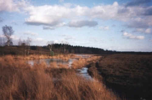 Renderklippen in de gemeente Heerde