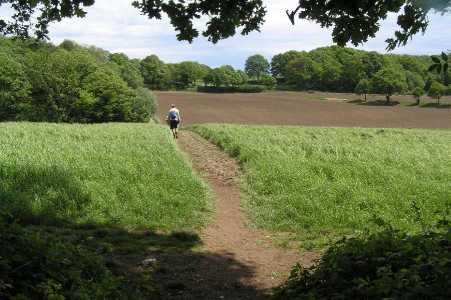 Met de Ronde van Zuid-Limburg 2006; gezicht vanuit bosgebied Eikenbosch