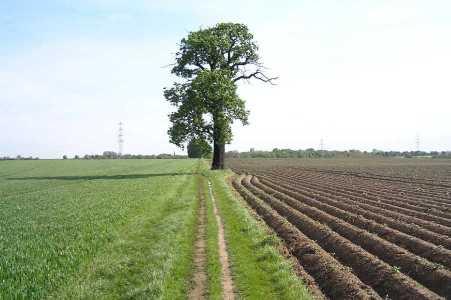 Met de Ronde van Zuid-Limburg 2006; De Elsenweg vanuit het Kloosterbosch