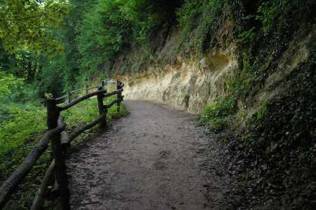 Met de Ronde van Zuid-Limburg 2006; steile helling langs de Geul