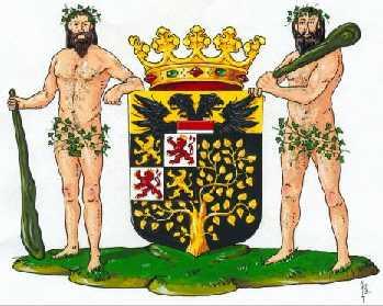 Dit is het wapen van 's-Hertogenbosch. Dit wapen is te vinden op de lokatie www.ngw.nl/indexgb.htm   Deze site is mogelijk gemaakt door de Bank Nederlandse Gemeente te Den Haag