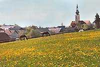 Groß Schönau