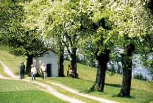 Kürnberg omgeving